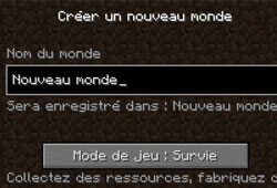 quel est le but de minecraft ?