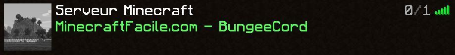 liste serveur minecraft